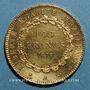 Coins 3e république (1870-1940). 100 francs Génie 1879A. Ancre simple. 900 /1000. 32,25 gr