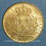 Coins Louis XVIII (1815-1824). 20 francs buste habillé 1815A. (PTL 900‰. 6,45 g). Type avec 5 long