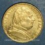 Coins Louis XVIII (1815-1824). 20 francs buste habillé 1815A. (PTL 900‰. 6,45 g). Type avec 5 moyen