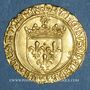 Coins Charles VIII (1483-1498). Ecu d'or au soleil. 2 émission (8 juillet 1494). Poitiers (annelet 8e)