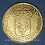 Coins Louis XIV (1643-1715). Louis d'or à l'écu 1690A. Réformation
