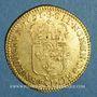 Coins Louis XIV (1643-1715). Louis d'or à l'écu 1691 S. Reims. Réformation