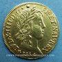 Coins Louis XIV (1643-1715). Louis d'or à la mèche longue 1654 T. Nantes. 653 ex !