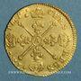 Coins Louis XIV (1643-1715). Louis d'or aux insignes 1704 A. Réformation