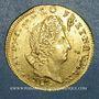 Coins Louis XIV (1643-1715). Louis d'or aux insignes 1704N Montpellier. Réformation