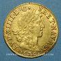 Coins Louis XIV (1643-1715). Louis d'or juvénile lauré 1670L. Bayonne