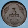 Coins Altenburg. Stadt. 3 mark 1921. Porcelaine