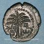 Coins Judée. 2e révolte juive - Révolte de Bar Kokhba (132-135). Bronze an 2 (=133-134). 21,76 mm