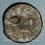 Coins Numidie. Massinissa (203-148 av. J-C) et ses successeurs. Bronze