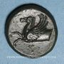 Coins Sicile. Syracuse. Timoleon (344-336 av. J-C). Bronze
