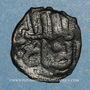 Coins Syrie. Mamlouks bahrites. Isma'il (743-746H).  Fals 74XH, Hamah