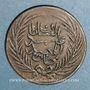 Coins Tunisie. Ottomans. Abdoul Mejid (1255-1277H = 1839-1861). 3 nasri 1268H (= 1851). Tunis