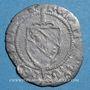 Coins Duché de Lorraine. René II d'Anjou (1473-1508). Blanc. Nancy