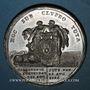 Coins Allemagne. Bavière. Charles Théodore (1777-99). Naissance du prince héritier. 1786. Médaille zinc