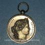 Coins Beaune (Côte d'Or). Fête du 14 juillet 1880. Médaille argent