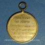 Coins Belgique. Révolution de 1830. Médaille bronze