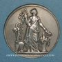 Coins Compagnie des Chemins de fer du Midi. Médaille en argent. 36 mm. Gravée par Dubois
