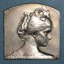 Coins Compagnie des Chemins de fer du Midi. Médaille en argent. 43 x 43 mm. Gravée par Deschamps