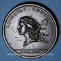 Coins Etats Unis. Libertas Americana. 1776. Médaille bronze. 48 mm