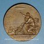 Coins Expérimentations de ballons dirigeables à Chalais Meudon. 1885. Médaille bronze