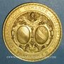 Coins Fribourg-en-Brisgau - Exposition industrielle du Rhin supérieur 1887. Bronze doré. 50 mm