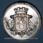 Coins Haute-Saône. Société d'agriculture. Concours de machines. 1875. Médaille en cuivre argenté