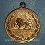 Coins Iran. Dynastie Kadjar. Médaillette commémorative bronze 1327H (1909). 22, 5 mm