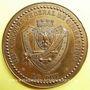 Coins Le Puy. 3e Congrès fédéral de gymnastique. 1887. Médaille en bronze. 46,5 mm. Gravée par A. Desaide