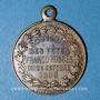 Coins Marseille. Conseil Municipal. Souvenir des Fêtes Franco-Russes. 1893. Médaille en laiton