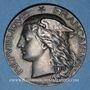 Coins Ministère de l'Agriculture et du Commerce. Eaux minérales. 1877. Médaille argent