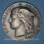 Coins Ministère du Commerce. Commission permanente des valeurs de douanes. 1898. Médaille argent