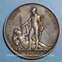 Coins Napoléon I. Paix d'Amiens. 1802. Médaille en argent. 48 mm. Gravée par Dumarest