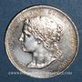 Coins Suisse. Genève. Exposition Nationale suisse. 1896. Médaille. Bronze arg. 30 mm gravée par G. Hantz
