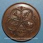 Coins Vatican. Concile oecuménique de 1869. Médaille cuivre