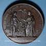 Coins Vatican. Pie IX (1846-1878). Resituttion de Rome 1849. Bronze. 60 mm