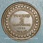Coins Tunisie. Ali III, bey (1299-1320H = 1882-1902). 2 centimes 1308H (= 1891)