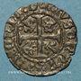 Coins Duché de Bourgogne. Charles le Téméraire (1467-1477). Engrogne frappée à Auxonne