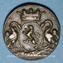 Coins Valenciennes. Maîtrise de la Chapelle Saint-Pierre. Méreau 1733