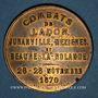 Coins Guerre de 1870-1871. Combats de Ladon. Juranville, Mézières et Beaune-la-Rolande. Médaille. 36,6 mm
