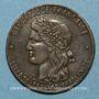 Coins Guerre de 1870-1871. Intervention de Victor Hugo - 1er anniversaire. Médaille bronze