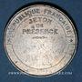 Coins Guerre de 1870-1871. Siège de Paris. Médaille étain. 33,9 mm