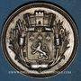 Coins Lyon. Voirerie - Architecture. Société de secours mutuel. Jeton argent. Poinçon: main indicatrice