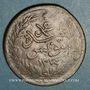 Coins Tunisie. Abdoul Mejid & Muhammad, bey (1272-76H = 1856-60) 2 kharub contremarqué /13 nasri 1274H