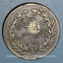Coins Tunisie. Abdoul Mejid, sultan avec Muhammad, bey (1272-76H = 1856-60) 2 kharoubs  /13 nasri 1272H