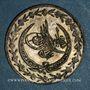 Coins Turquie. Mahmoud II (1223-1255H = 1808-1839). 20 para 1223, an 31H. Constantinople
