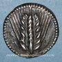 Münzen Lucanie. Métaponte. Drachme. Vers 540-510 av. J-C
