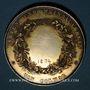 Monnaies Alsace. Colmar. Jardins et association viticole de Colmar. 1874. Médaille argent doré. 38,92 mm