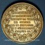 Monnaies Alsace. Colmar. Visite de Charles X. 1828. Médaille argent doré. 35 mm. Gravé par Gayrard