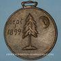 Monnaies Alsace. Eugène Hartmann – Reconnaissance de l'Alsace. 1899. Médaille bronze coulée