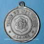 Monnaies Alsace. Mulhouse. Cavalcade de bienfaisance. 18 avril 1881. Médaille en étain. 32 mm
